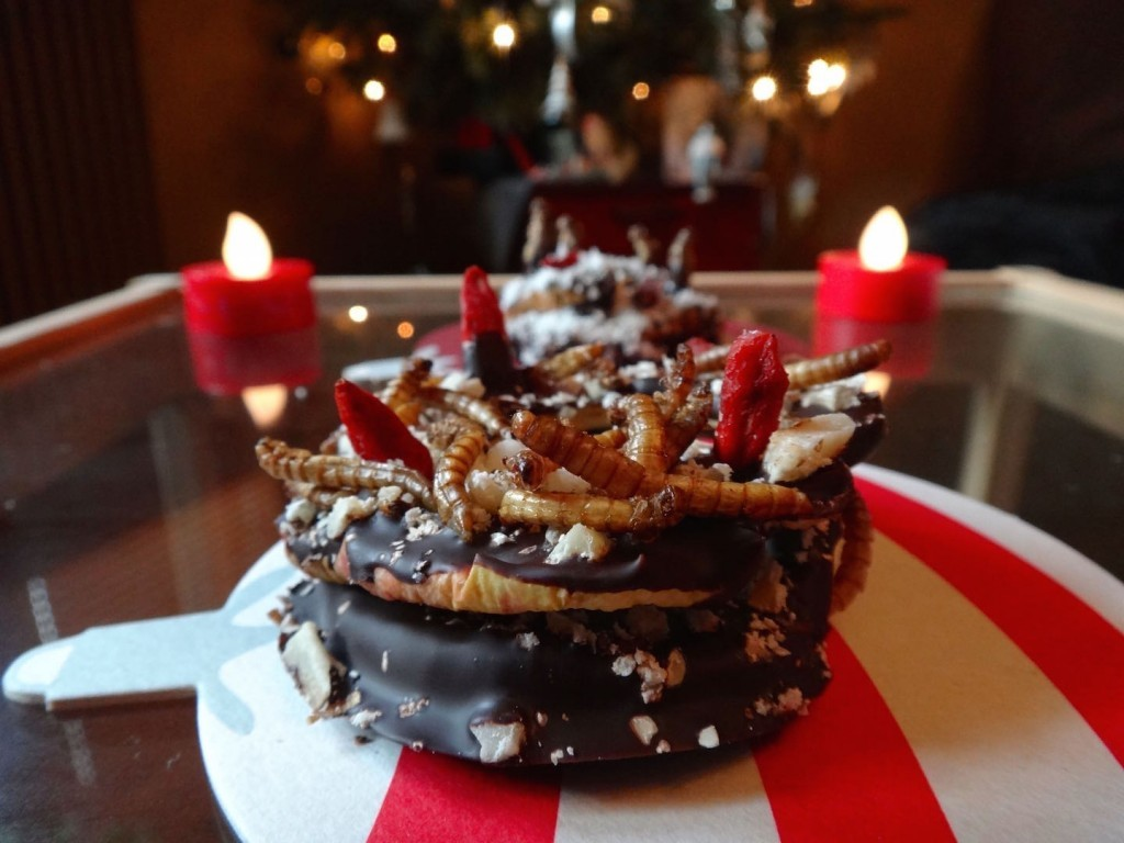 insects christmas cricket entomophagy paleo chocolate