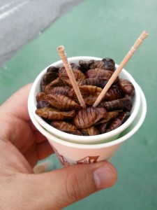 silkworms entomophagy insects proteins
