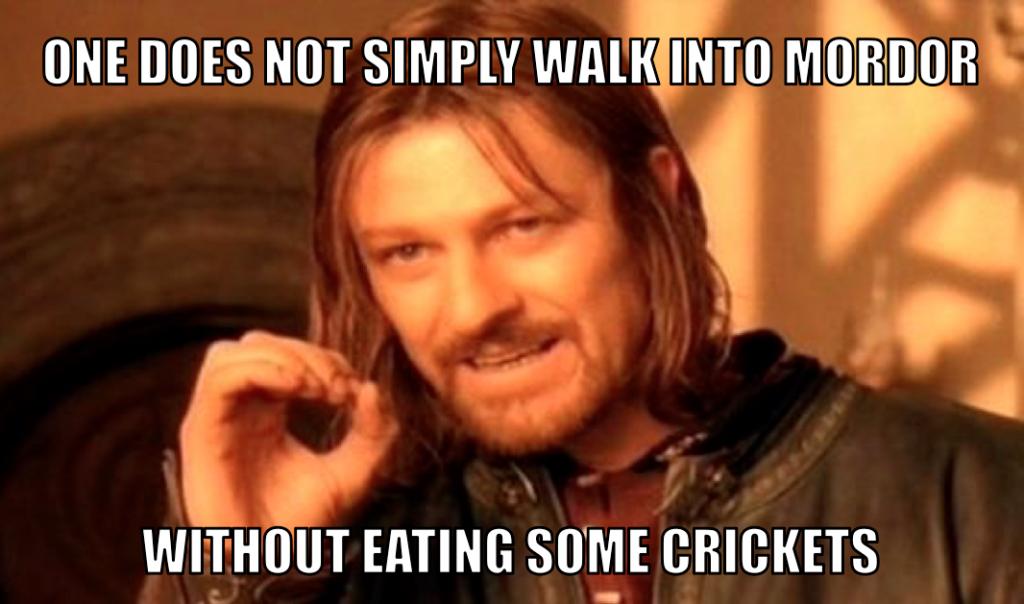 mordor-cricket