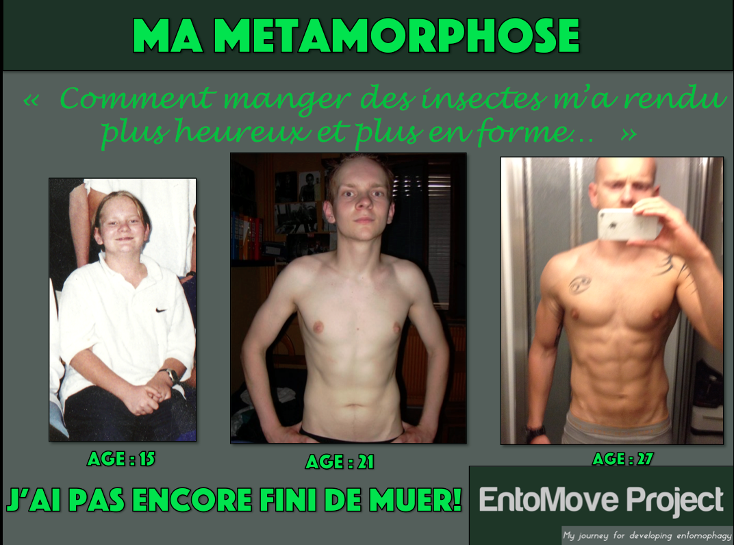 musculation régime entomophagie insectes fitness transformation