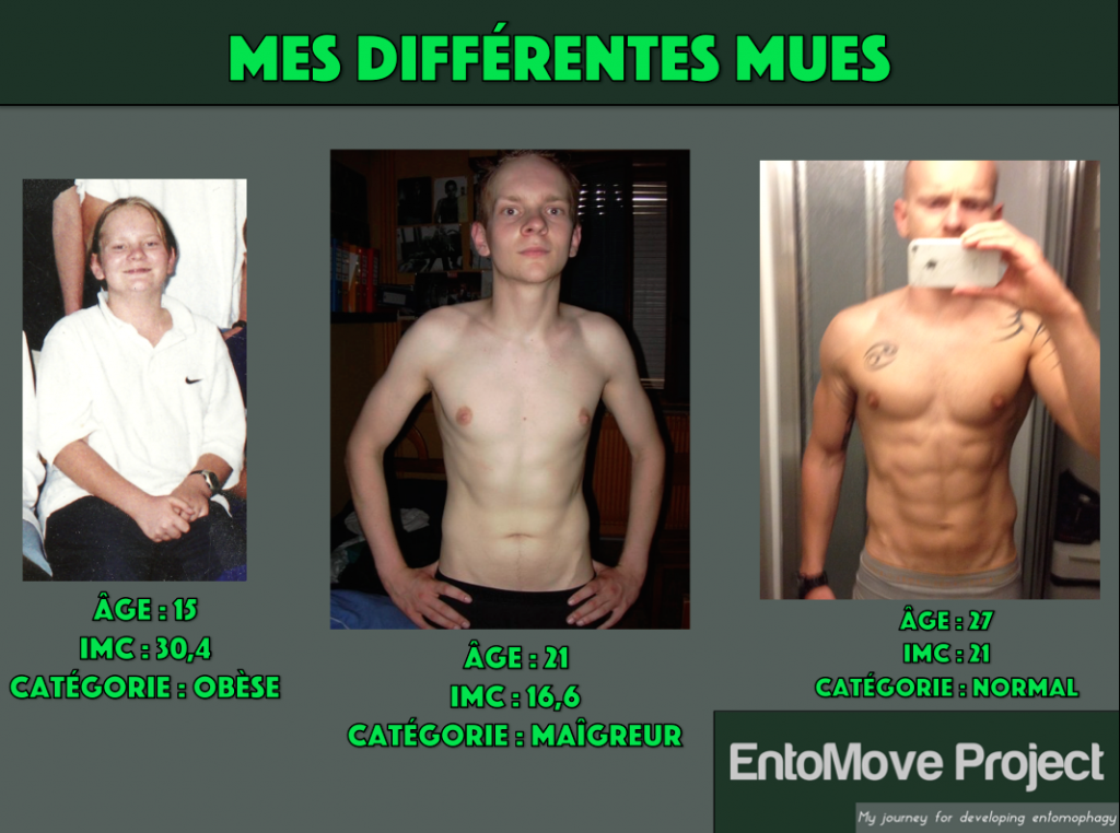 musculation régime transformation insectes entomophagie fitness insecte