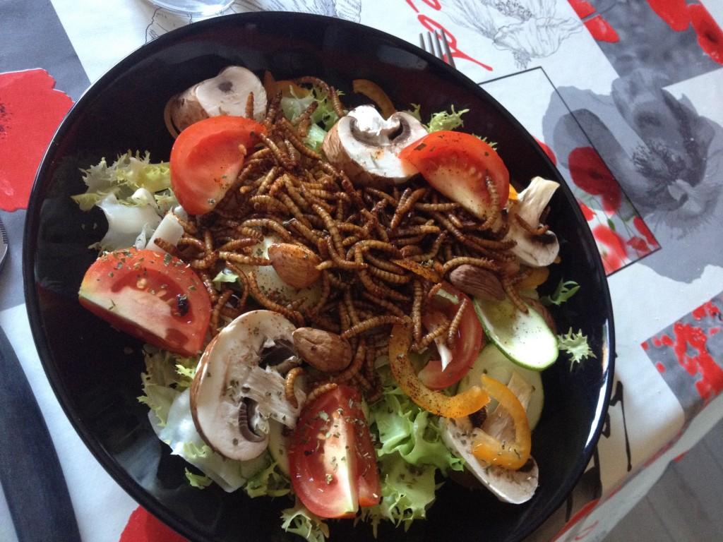 entomophagie insectes grillons vers de farine ténébrions insectes comestibles manger des insectes