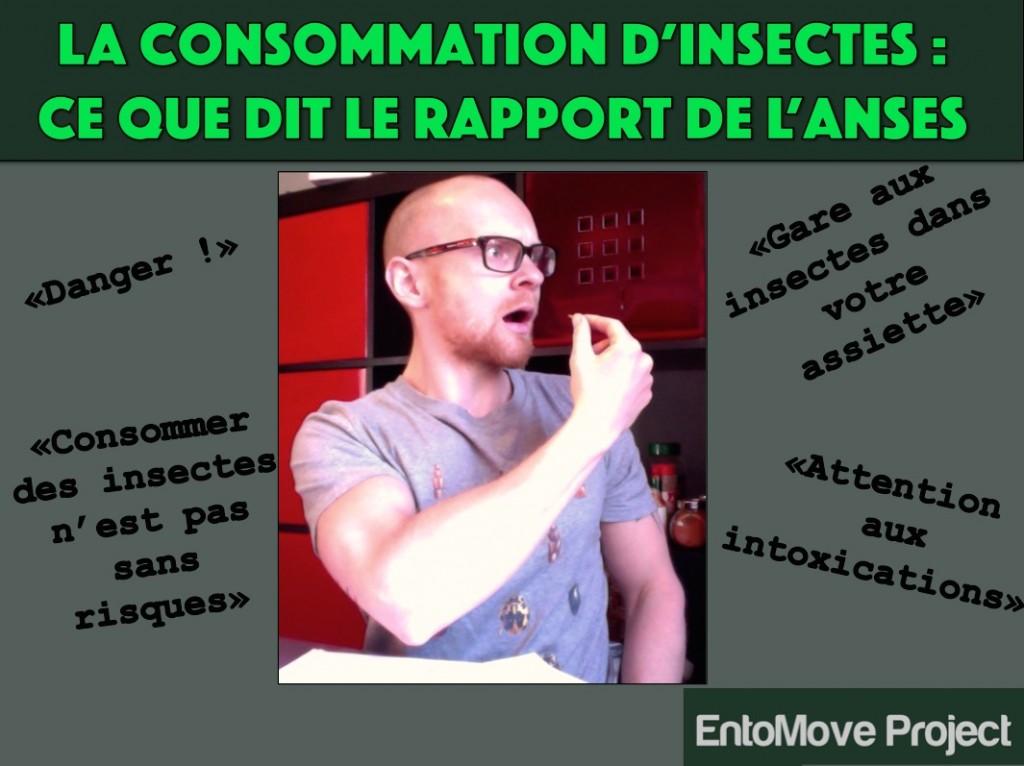 insectes comestibles entomophagie France Strasbourg entomove project grillon ver de farine danger rapport ANSES