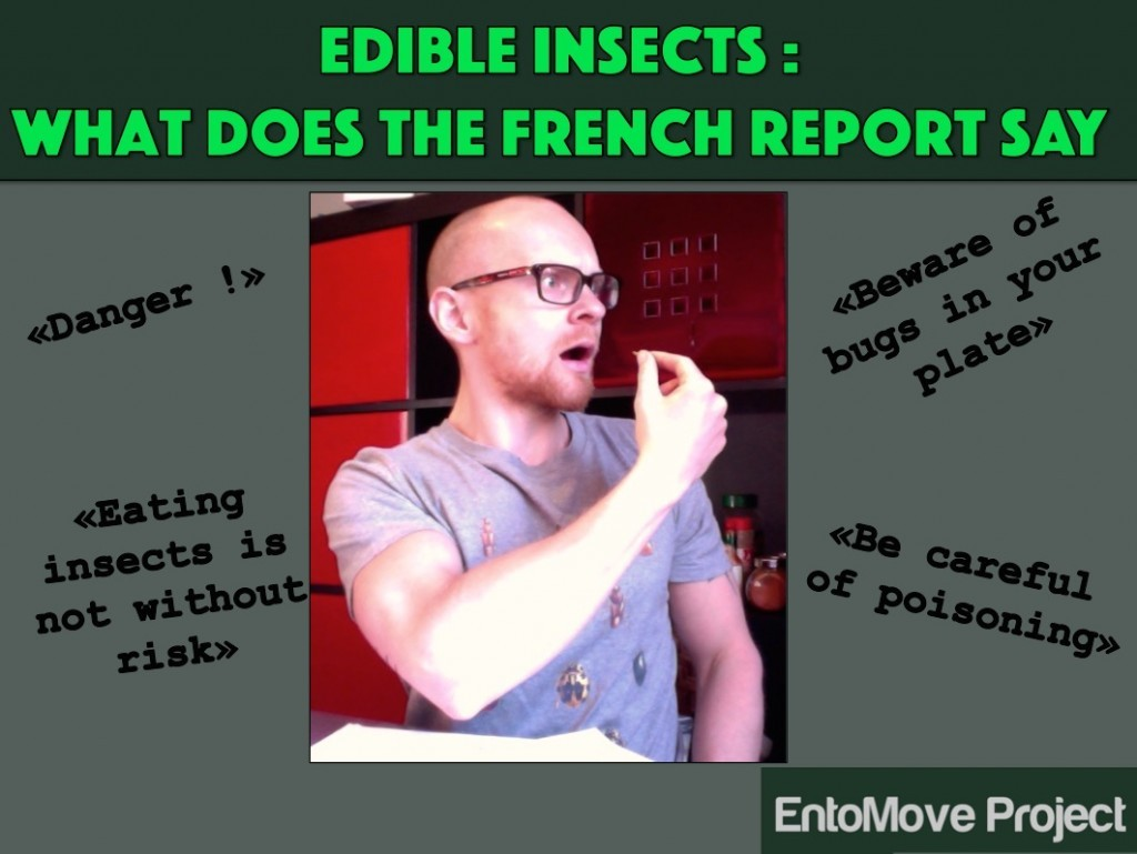 edible insects entomopagy legislation european food insects