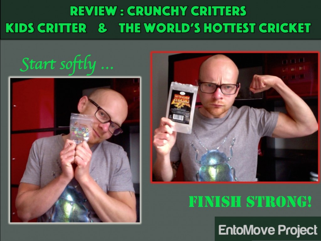 crunchy critters cricket mealworms entomove entomoveproject edible insects entomophagy review