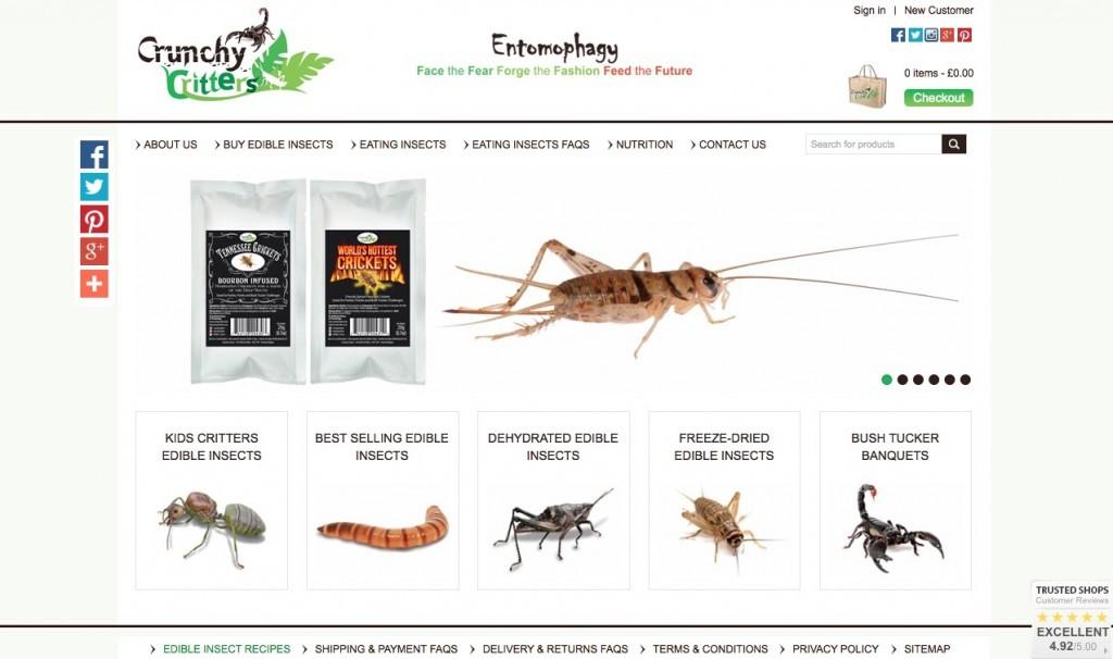 grillon tenebrion molitor ver de farine entomoveproject entomove entomophagie crunchy critter