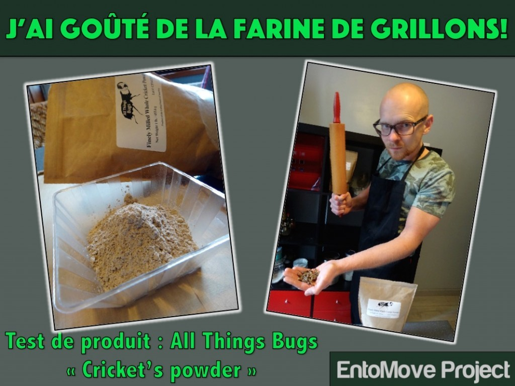 protéines all things bugs entomoveproject entomophagie farine grillon insectes comestibles entomove paleo