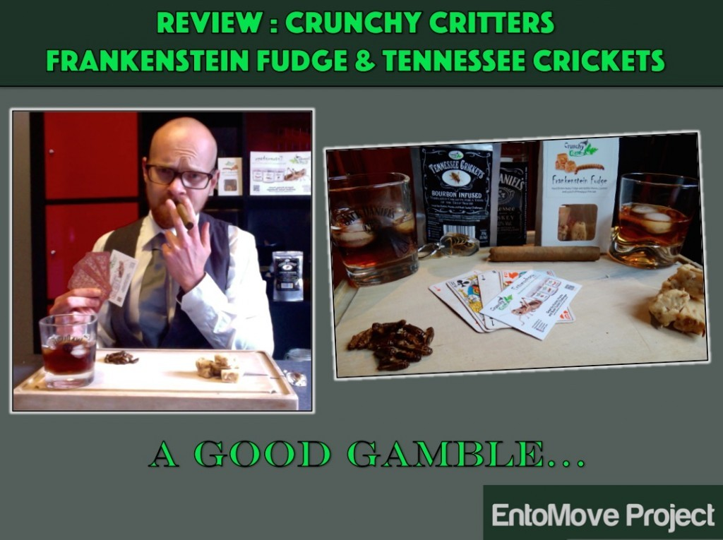 entomophagy edible insects mealworms entomove entomoveproject crunchy critters london uk crickets fudge mealworm