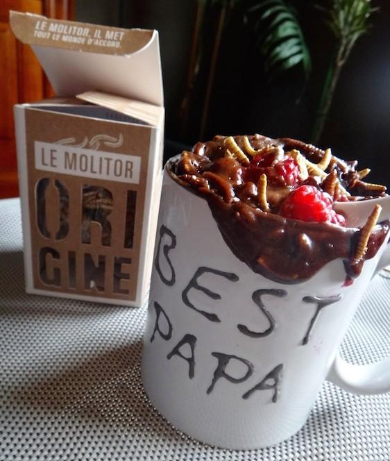 entomophagy edible insects mealworms molitor entomove entomoveproject jiminis mug cake father chocolate