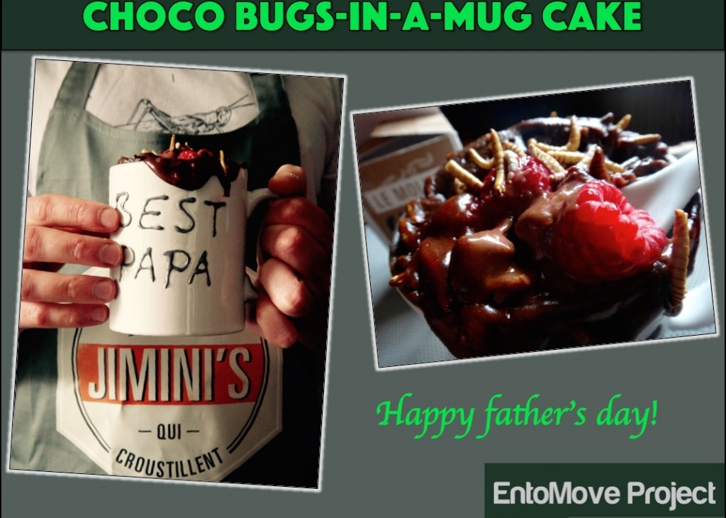 entomophagy edible insects mealworms molitor entomove entomoveproject jiminis mug cake father chocolate