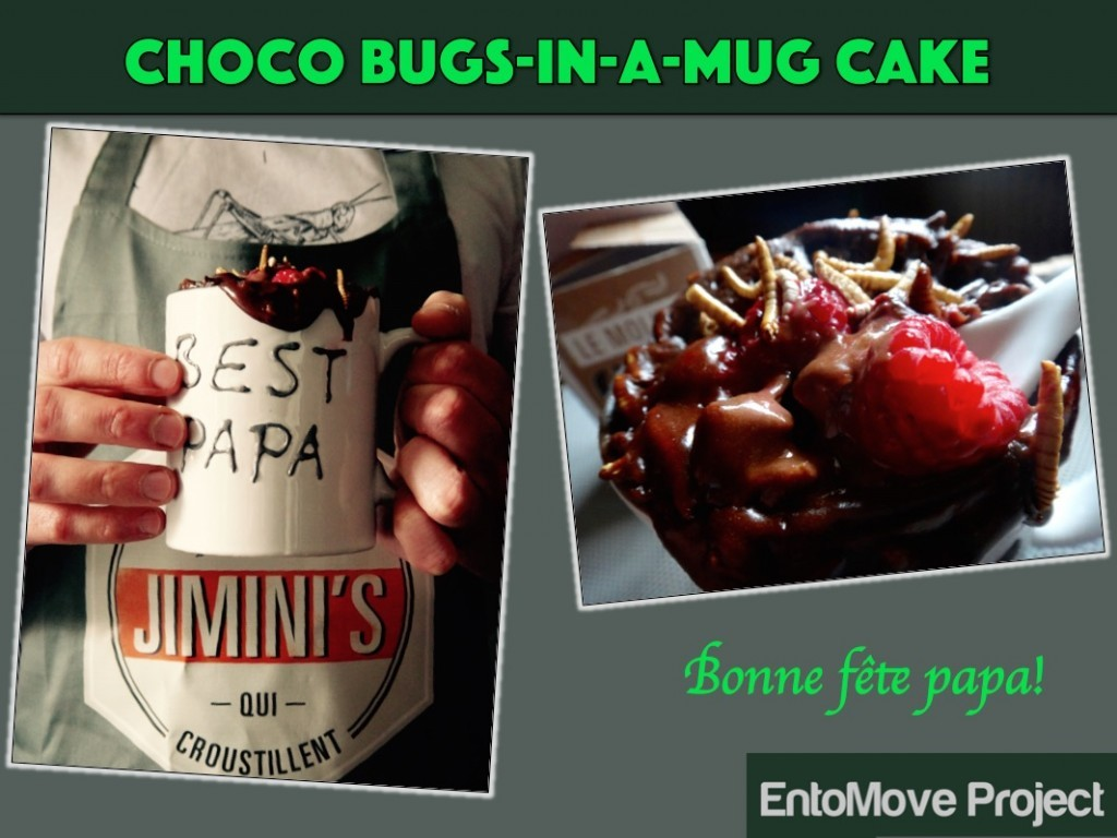 jiminis recette molitor entomove entomove project insectes comestibles chocolat dessert