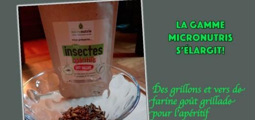 micronutris entomophagie entomoveproject insectes comestibles entomove grillons vers de farine