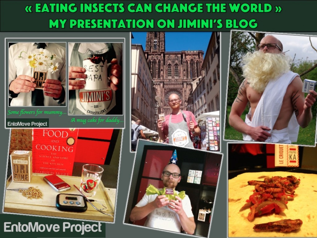 eating insects entomophagy blog jiminis