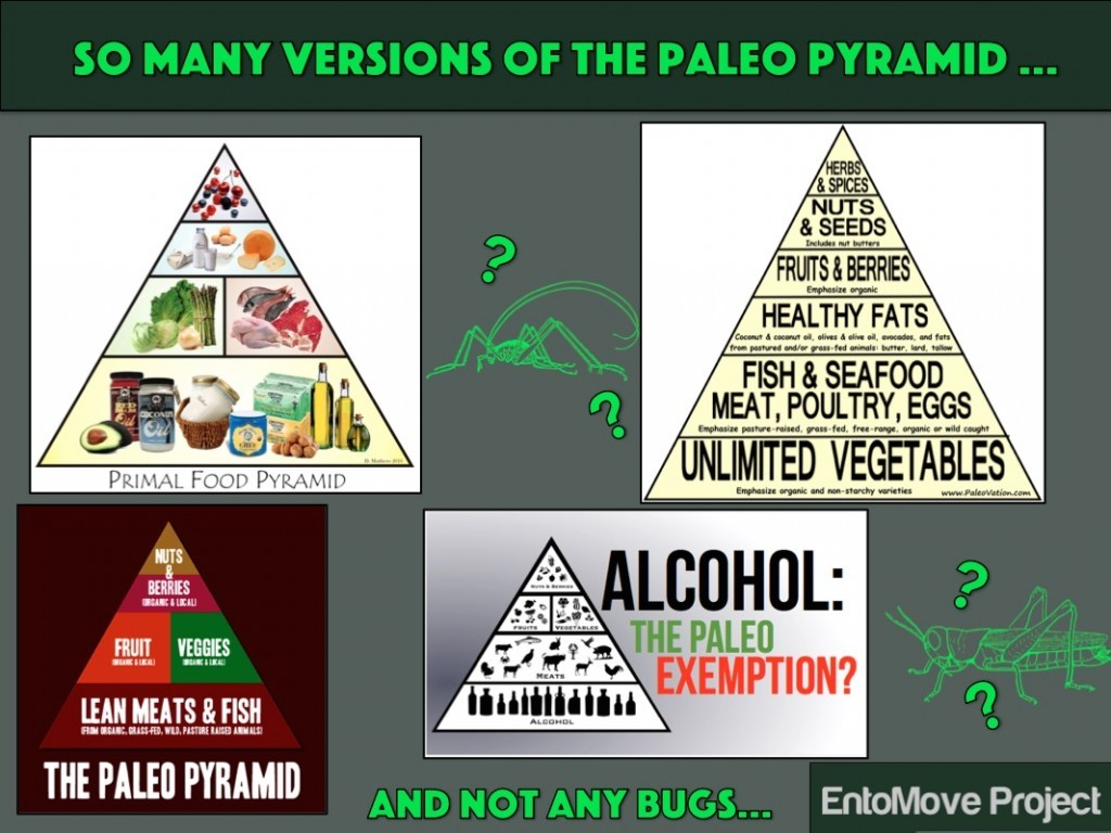 paleo crickets mealworms food edible insects entomophagy