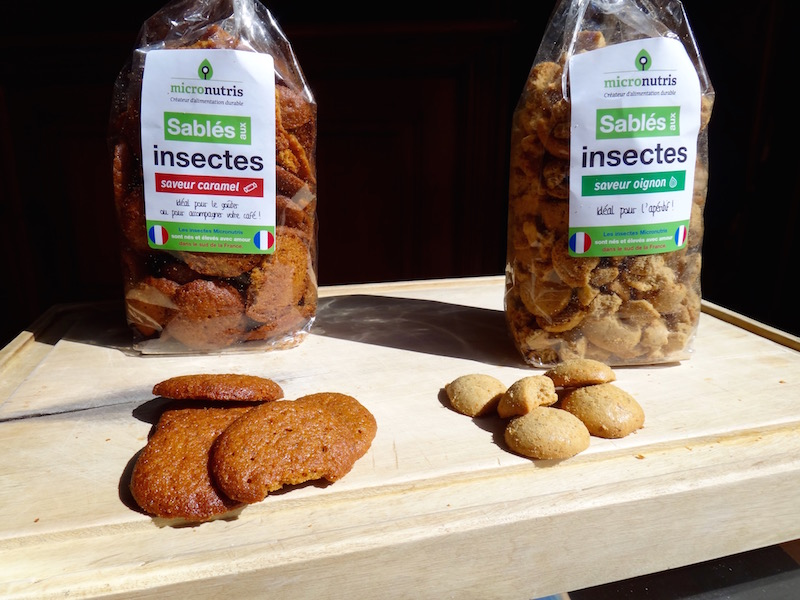 micronutris biscuits edible insects entomophagy