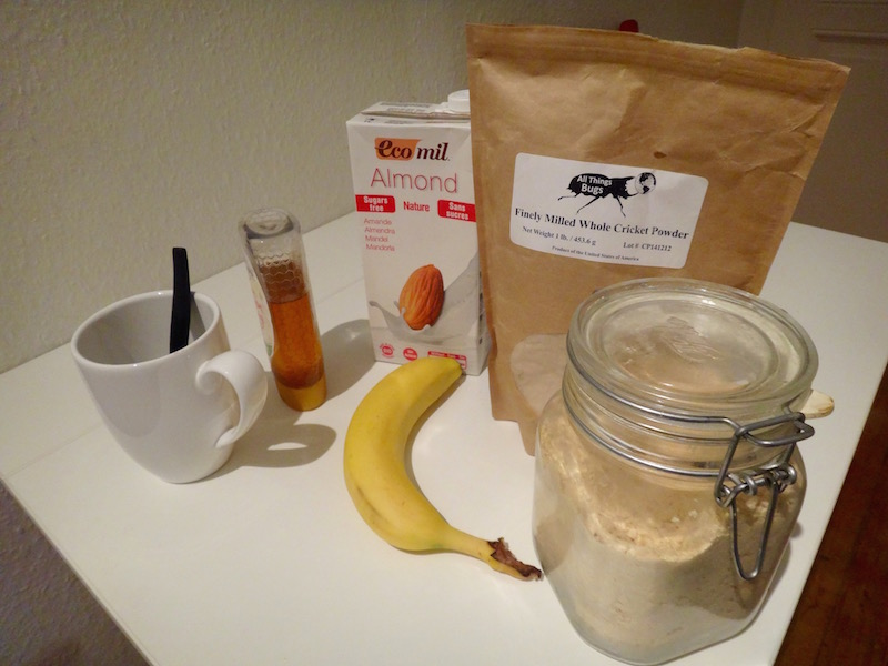 paleo mug cake cricket flour mug cake edible insects