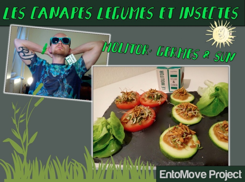 insectes comestibles graines germées recettes jimini's