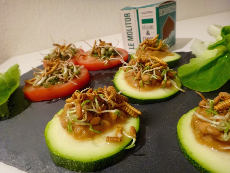 mealworms recipe edible insects entomophagy sprout healthy