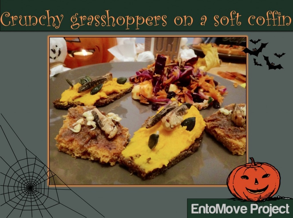 insects for halloween grasshoppers entomophagy edible insects cover