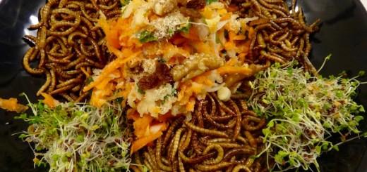vers de farine cuisine insectes comestibles entomophagie 1