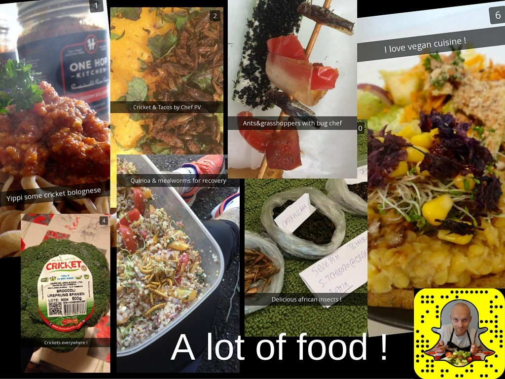 snapchat edible insects entomophagy mealworms cricket fitness food
