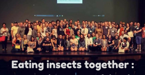 detroit-edible-insects-entomophagy-eating-insects