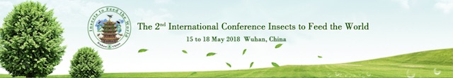 edible insects 2018 conference wuhan china