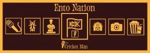 entonation magazine edible insects 2018