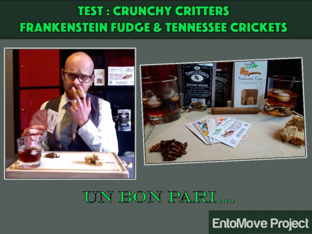 crunchy critter video youtube insectes comestibles dégustation test grillon entomophagie vers de farine entomove entomoveproject