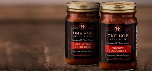 grillons vers de farine insectes comestibles toront detroit indiegogo one hop