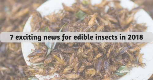 entomophagy edible insects 2018 news